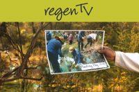Popes Glen field day series- Revegetation