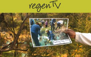 Popes Glen field day series- Revegetation