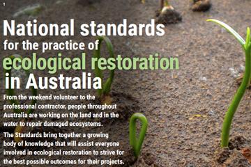 Restoration Standards plain language