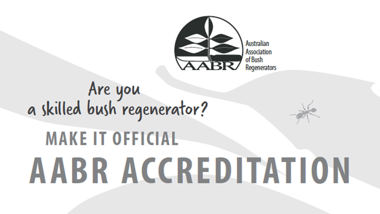 Accreditation_make it official