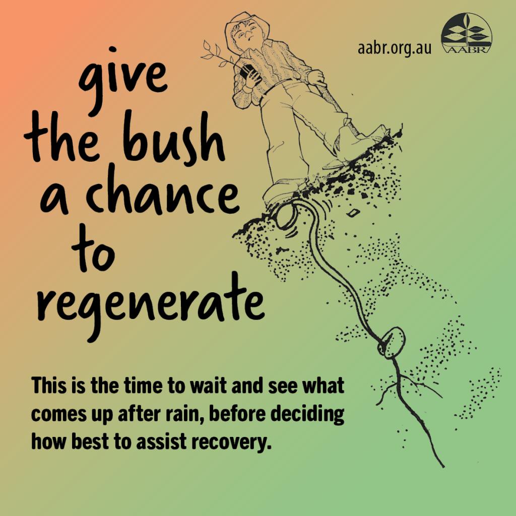 Wait to regenerate